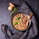 Tasty mushroom sauce Royalty Free Stock Images