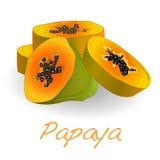 Fresh and tasty papaya Stock Image