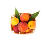 Fresh tasty peaches with green leaves in wooden box Stock Photos