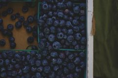 A fresh tasty pile of blue berries at the market. Looking down at the fresh pile of blue berries in the boxes at the local farmers market stock images