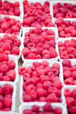 Fresh tasty pink raspberry closeup macro on market outdoor Royalty Free Stock Image