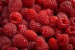 Fresh tasty Raspberries. Fresh tasty and sweet macro texture Raspberries Royalty Free Stock Photography