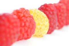 Fresh and tasty raspberry. Close up Stock Photography