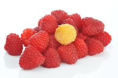 Fresh and tasty raspberry. Close up Royalty Free Stock Photography