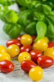 Fresh tasty red and yellow tomatoes. On wooden background Royalty Free Stock Photo