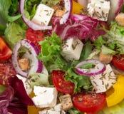 Fresh tasty  salad Royalty Free Stock Image