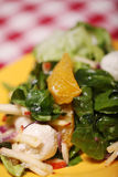Fresh tasty salad in a plate on a tablecloth Stock Images
