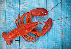 Fresh tasty seafood served on old wooden table. stock photography