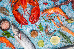 Fresh tasty seafood served on old wooden table. Royalty Free Stock Photo
