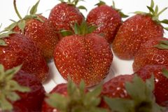 Fresh and tasty strawberries Royalty Free Stock Photography