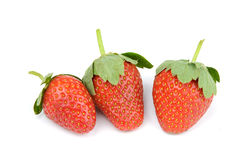 Fresh and tasty strawberries Stock Photos