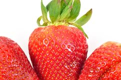 Fresh and tasty strawberries Royalty Free Stock Photo