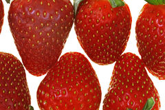 Fresh and tasty strawberries Stock Photography