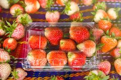 Fresh and tasty strawberries background, close up.Thailand. Fresh and tasty strawberries background, close up.Thailand Stock Images
