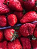Fresh tasty strawberries in a pack on the market royalty free stock photography