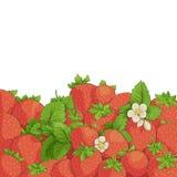 Fresh tasty strawberries Royalty Free Stock Photos