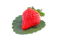 Fresh tasty strawberry  Royalty Free Stock Photo