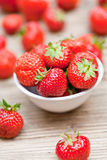 Fresh tasty sweet strawberries macro closeup garden outdoor stock photography