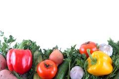 Fresh tasty vegetables. Isolated on white Royalty Free Stock Photo