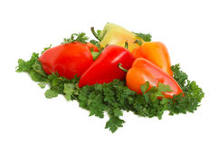 Fresh tasty vegetables Royalty Free Stock Photo