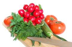 Fresh tasty vegetables Stock Image