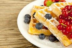 Fresh tasty waffer with powder sugar and mixed fruits Royalty Free Stock Image