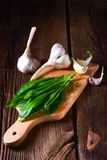 Fresh and tasty wild garlic. A fresh and tasty wild garlic Stock Photography