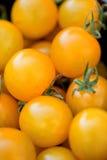 Fresh tasty yellow cherry tomatoes macro closeup on market Royalty Free Stock Images