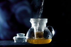 Fresh tea Stock Photography