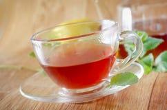 Fresh tea Stock Images