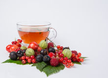 Fresh tea with assorted berry Stock Photos