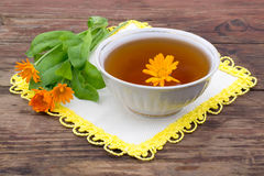 Fresh tea with Calendula Stock Image