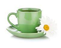 Fresh tea camomile flowers Stock Image