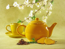 Fresh tea ceremony with flowers. Ultimate spring feeling: fresh tea with mint leaves and ginger Royalty Free Stock Photo