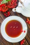 Fresh tea Royalty Free Stock Photo
