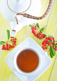 Fresh tea Royalty Free Stock Photo