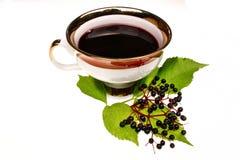 Fresh tea fruit elderberry isolated Stock Images