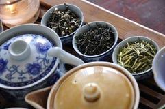 Fresh tea leaves. Pots of fresh tea leaves stock images
