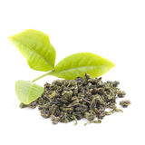 Fresh tea and tea finished products Royalty Free Stock Images