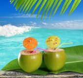 Fresh tender green coconuts straw beach cocktails. Fresh tender green coconuts straw cocktails on tropical caribbean beach Royalty Free Stock Image