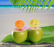 Fresh tender green coconuts straw beach cocktails Stock Photo