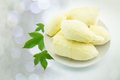 Fresh Thai fruit, peeled durian, on white plate with leaves on b Stock Images
