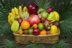 Tropical fruits basket Stock Images