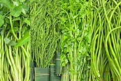 Fresh Thai greens Stock Photo