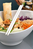 Fresh Thai Salad with Spring Rolls. Freshly prepared Thai salad with spring rolls in a bowl with some chopsticks royalty free stock photography