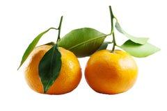 Fresh thai two orange fruit with green leaf on white background. Fresh of thai two orange fruit with green leaf on white background Royalty Free Stock Photo