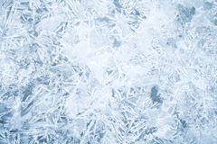 Fresh thin ice background texture Royalty Free Stock Photography