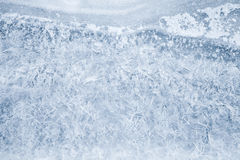 Fresh thin ice pattern, photo texture royalty free stock photography