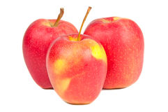 Fresh Three red apples. Ripe red apple on a white background Stock Photos