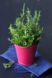 Fresh thyme. stock photography